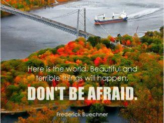 英语名言 | 这个世界,美好的和糟糕的事情都会发生,所以,请不要害怕