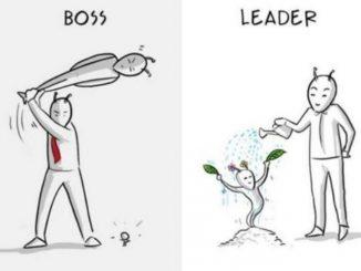 英语漫画 | 学会做一个领导,而不仅仅是一个上司