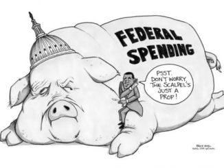 美国俚语 | 美国学术界的猪肉桶政治 pork barrel