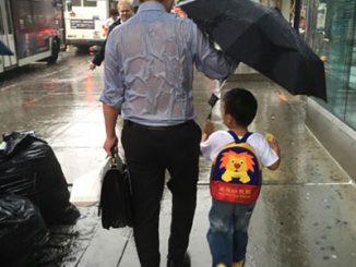 双语文摘 | 关于父爱的暖心美句