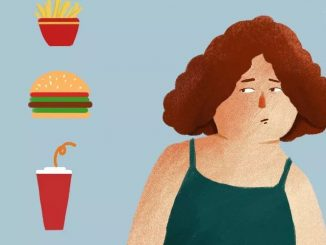 翻译研究 | 胖可不是Fat,这完全是两码事!