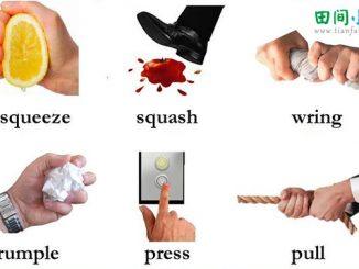 图说英语词汇 | 有关挤、踩、拧、皱、按、拽的英语词汇