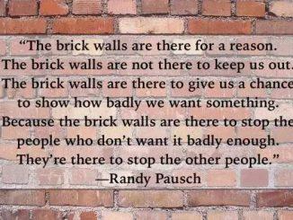 英语名言 | 砖墙在那里是有原因的