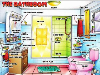图说英语词汇 | 与浴室卫生间相关的物品器具英语词汇中英对照