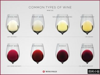 图说英语词汇 | 常见葡萄酒种类英语词汇详解