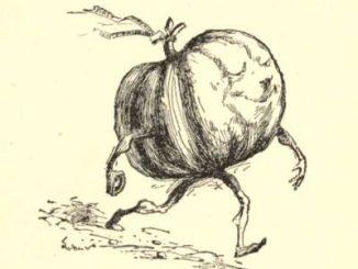 英语短篇小说 | The Pumpkin-Glory 南瓜荣耀 威廉·迪恩·豪威尔斯
