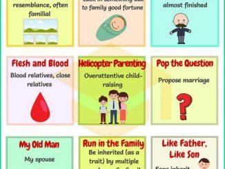 图说英语词汇 | 9个与家庭相关的英语习语