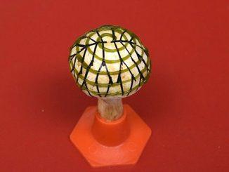 英语热词   Bionic mushroom仿生蘑菇