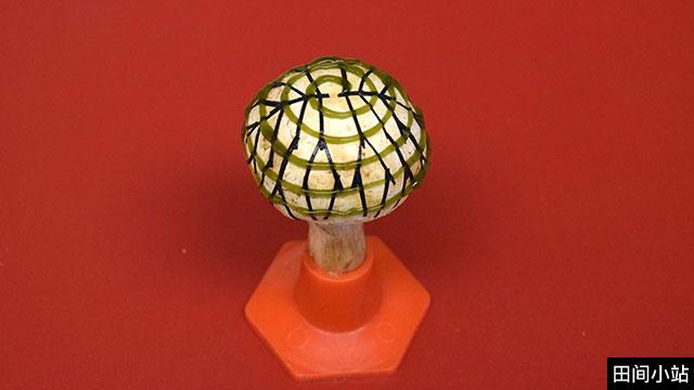 英语热词 | Bionic mushroom仿生蘑菇