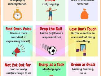 图说英语词汇 | 9个与Skill(技能)相关的英语习语