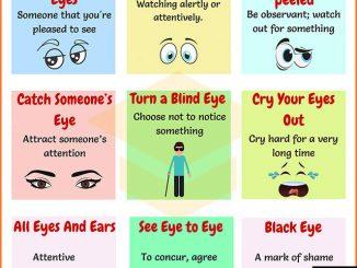 图说英语词汇 | 9个与眼睛相关的英语习语