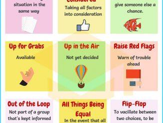 图说英语词汇 | 9个与决定相关的英语习语