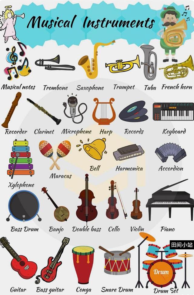 图说英语词汇 | 常见乐器英语名称中英对照