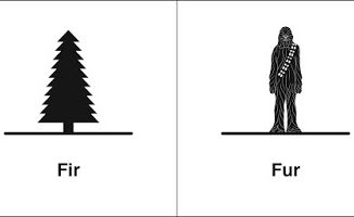 同音异义 | fir & fur