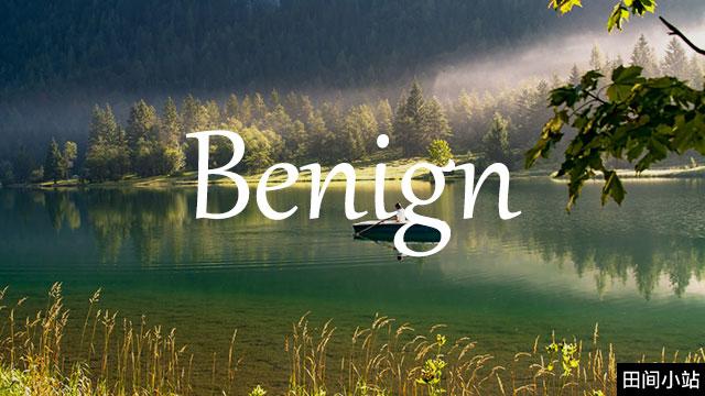 小词详解 | benign