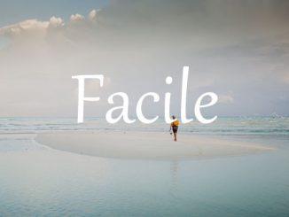 小词详解   facile