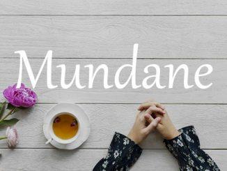 小词详解 | mundane