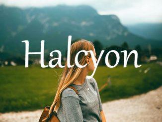 小词详解 | halcyon