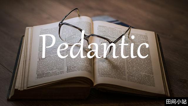 小词详解   pedantic