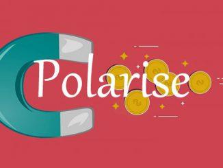 polarise英 [ˈpəʊləraɪz] 美 [ˈpoʊləraɪz]