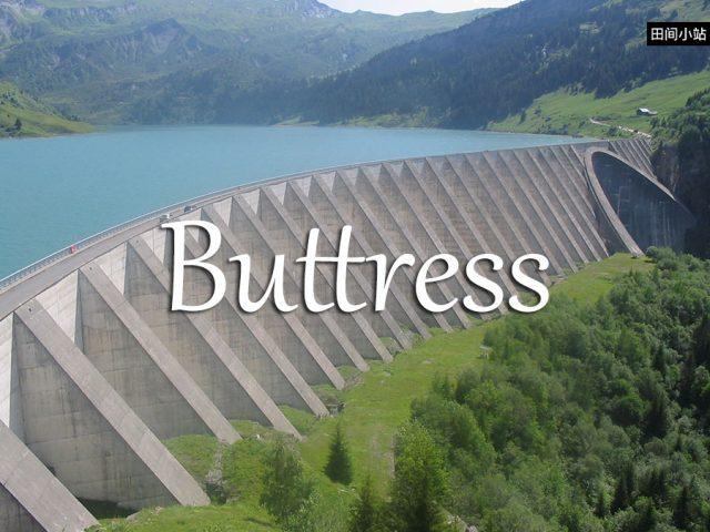 小词详解 | buttress