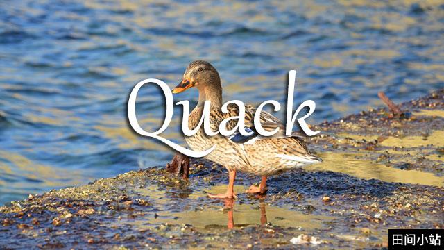 小词详解 | quack