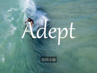 小词详解 | adept