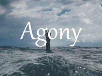 小词详解 | agony