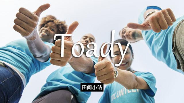 小词详解 | toady