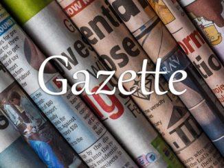小词详解 | gazette