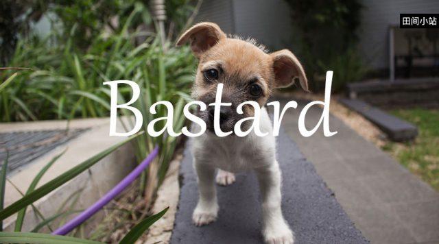 小词详解 | bastard