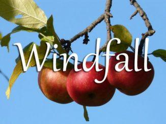 小词详解 | windfall