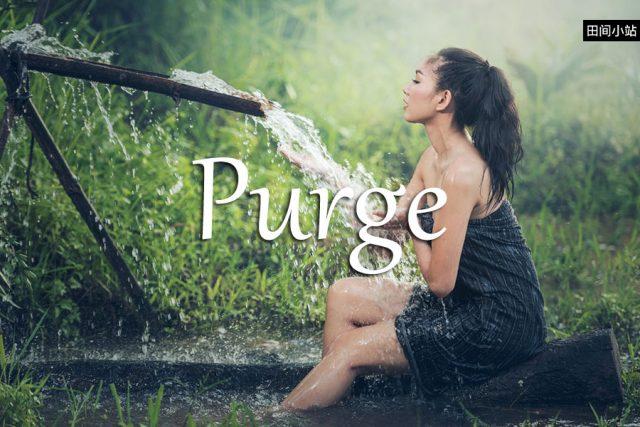 小词详解 | purge