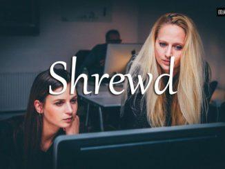 小词详解 | shrewd