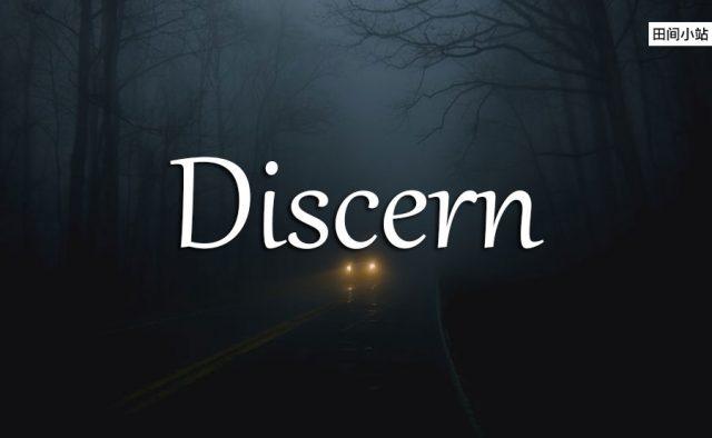 小词详解 | discern