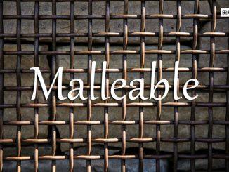 小词详解 | malleable