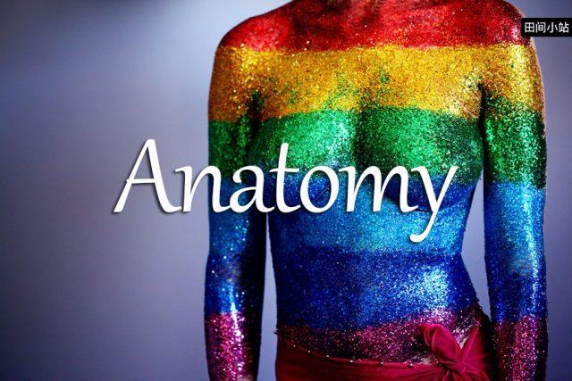 小词详解 | anatomy