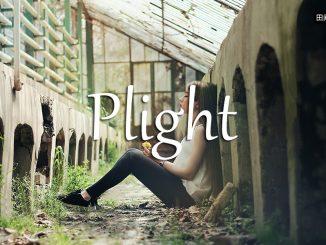 小词详解 | plight