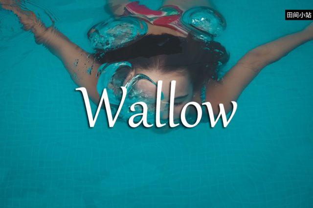小词详解 | wallow