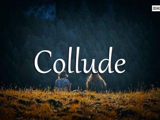 小词详解 | collude