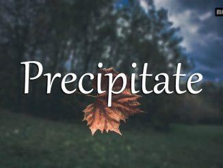小词详解 | precipitate