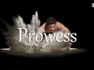 小词详解 | prowess