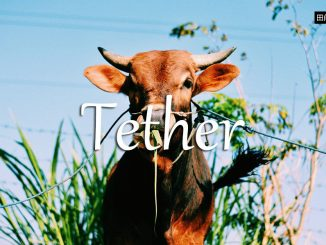 小词详解 | tether