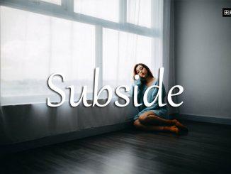 小词详解 | subside