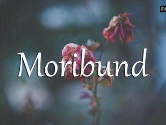 小词详解 | moribund