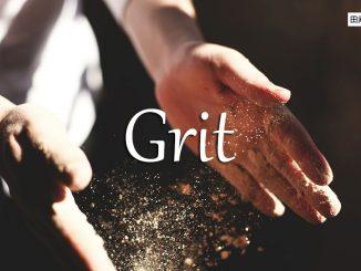 小词详解 | grit