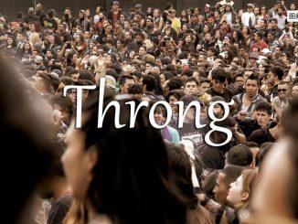 小词详解   throng