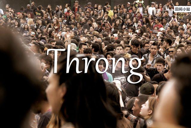 小词详解 | throng
