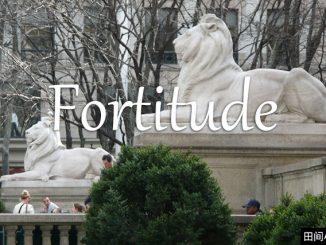 小词详解 | fortitude